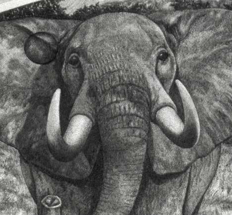 .600 Elephant #3 closeup